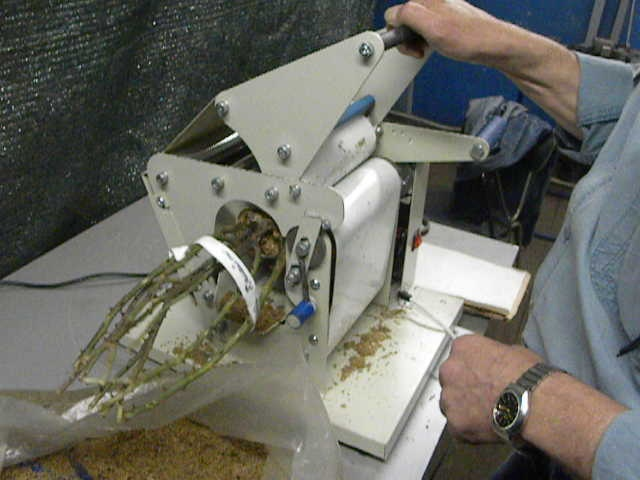 Packaging Machine for Flower and Shrub Rhizomes